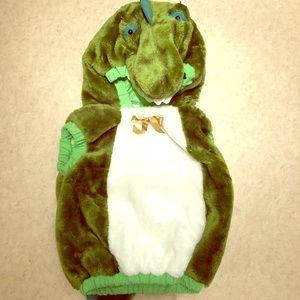 Other - Baby Dinosaur Costume